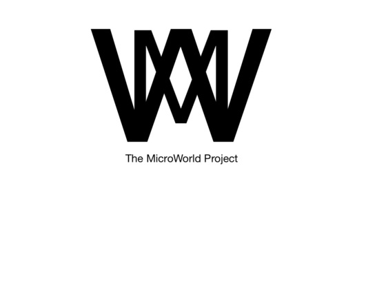The MicroWorld